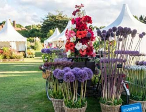 Spring into 2020 with RHS Garden visits and special events