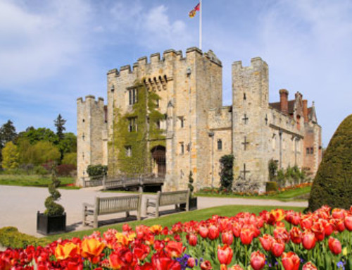 Tulip celebrations at Hever Castle & Gardens